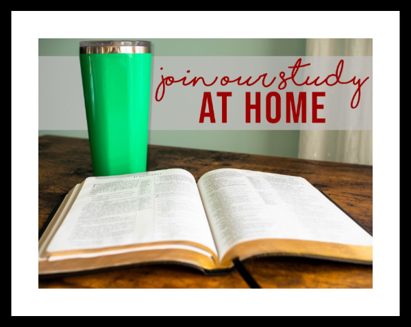 Christian Ed. Opportunities for Adults and Youth